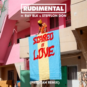 Scared of Love (feat. RAY BLK & Stefflon Don) [Preditah Remix] - Single Mp3 Download