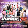 Junior Songfestival '12 - Verschillende artiesten