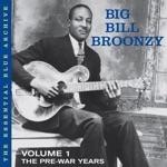 Big Bill Broonzy - New Shake 'em On Down