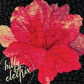 Billy Electrix - Drive