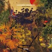 Camarão Orkestra - Dia De Verão