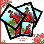 Akil Vandalyze - At Your Service