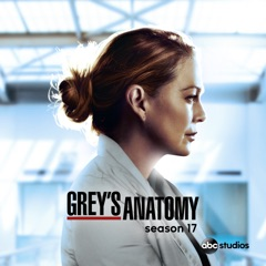 Grey's Anatomy, Season 17 (subtitled)