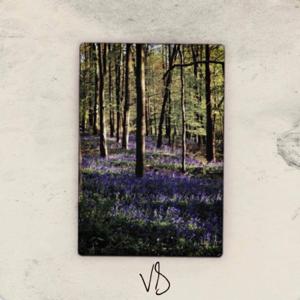 Cravinqz - Violet Days