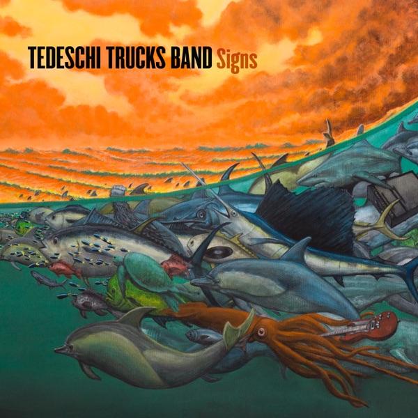 Tedeschi Trucks Band - Hard Case song lyrics