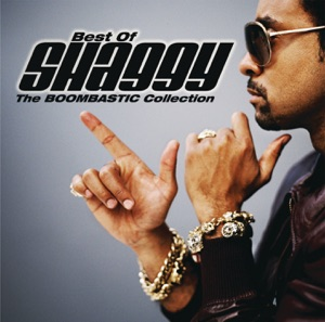 Shaggy - In the Summertime (feat. Rayvon) - Line Dance Music