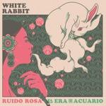 La Era de Acuario & Ruido Rosa - White Rabbit