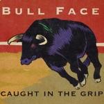 Bull Face - Year of the Bull
