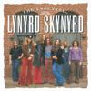 Lynyrd Skynyrd - Free Bird (Live At The Fox Theater, 1976) artwork