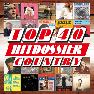 Various Artists - TOP 40 HITDOSSIER: Country