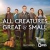 All Creatures Great and Small, Season 1 image