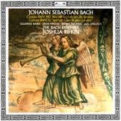 Julianne Baird, Bach Ensemble - Jauchzet Gott in allen Landen Cantata, BWV 51 -2. Rezitativ: Wir beten zu dem Tempel an