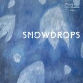Sven Wunder - Snowdrops