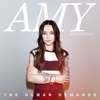 Amy Macdonald - The Hudson artwork