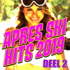 Apres Ski Hits 2019 (Deel 2) - Various Artists