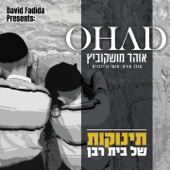 תינוקות של בית רבן Feat. מוטי גרינבוים Ohad Moshkowitz - Ohad Moshkowitz