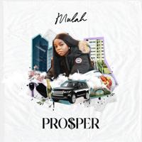Mulah - Prosper artwork