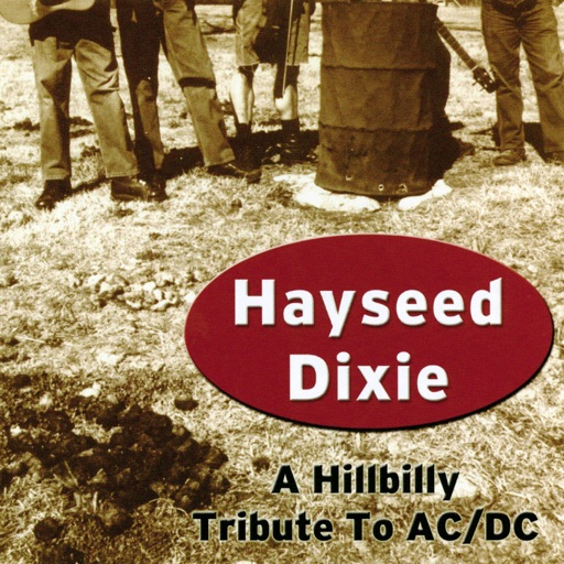 Art for Have a Drink on Me by Hayseed Dixie