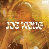 Joe Wong - Shadow Of The Year