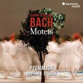 """Raphaël Pichon and Pygmalion - Jesu, meine Freude, BWV 227: """"Jesu, meine Freude"""""""