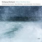 Wolfgang Muthspiel - Blueshead
