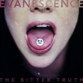 Evanescence - Take Cover