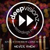 Never Knew (Sandy Rivera's Classic Mix) - Single