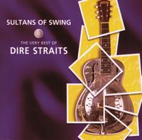 Dire Straits - Private Investigations artwork
