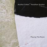 Avishai Cohen & Yonathan Avishai - Sir Duke
