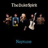 The Duke Spirit - The Step and the Walk