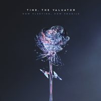 Time, The Valuator - How Fleeting artwork
