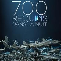 Télécharger 700 requins dans la nuit Episode 1