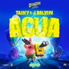 Agua (Music From