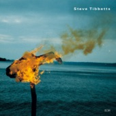 Steve Tibbetts - Lochana