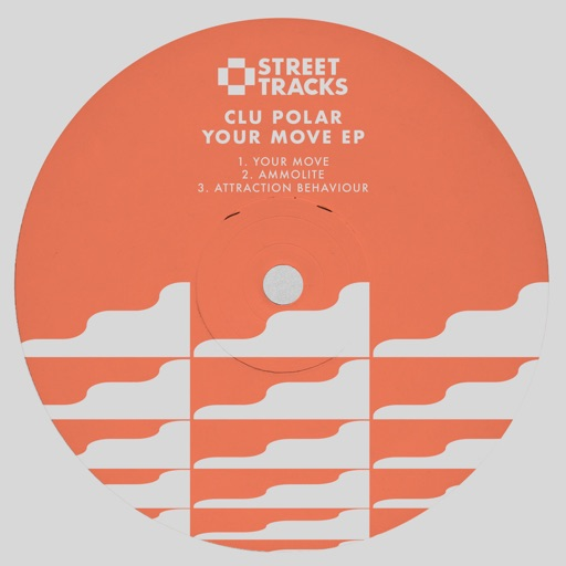 Your Move - Single by Clu Polar
