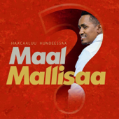 Maal Mallisaa