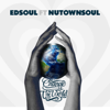 Edsoul - Change the World (feat. Nutownsoul) artwork