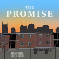 Podcast cover art for The Promise