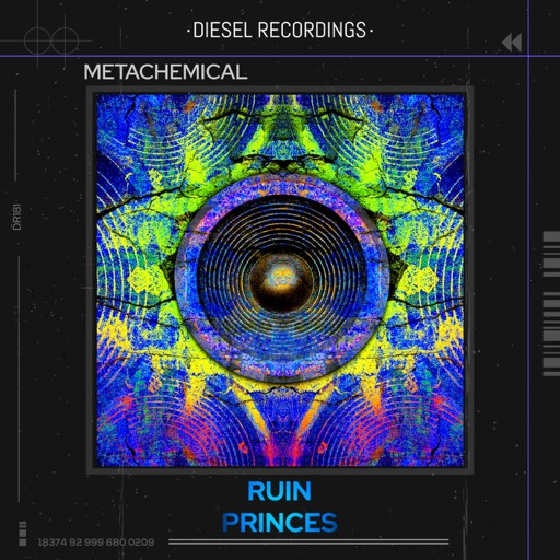 Ruin / Princes - Single by Metachemical