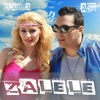 Zalele (2013 New Version) - Single, Claudia