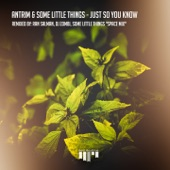 Antrim, Some Little Things - Just so You Know
