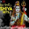 Shiva Hits - EP