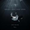 Chris Holsten - Smilet i ditt eget speil (Acoustic) artwork