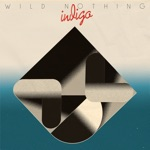 Wild Nothing - Partners in Motion