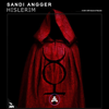 Sandi Angger - Hislerim (feat. Trap Nation) artwork