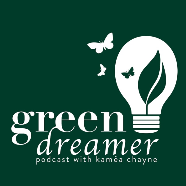 Green Dreamer: Elevating Sustainability, Bringing Eco Ideas to Life