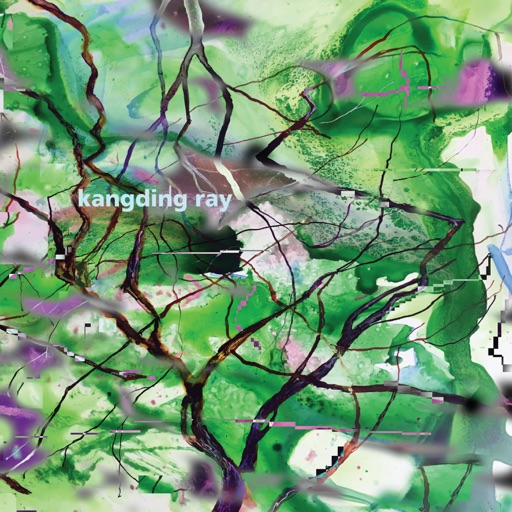 Branches - EP by kangding ray