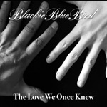 The Love We Once Knew - Single