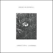 Drew McDowall - Unnatural Channel (Part 2)