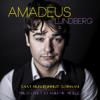 Amadeus Lundberg - Saat mun rummut soimaan artwork